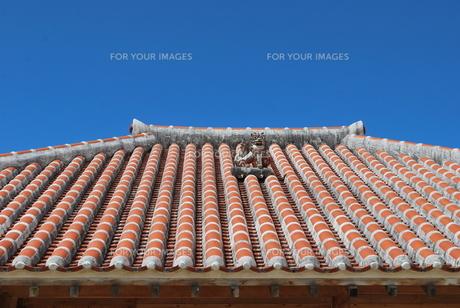 赤瓦の屋根とシーサーの写真素材 [FYI00335925]