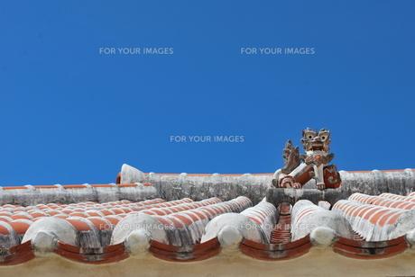 赤瓦の屋根とシーサーの写真素材 [FYI00335943]