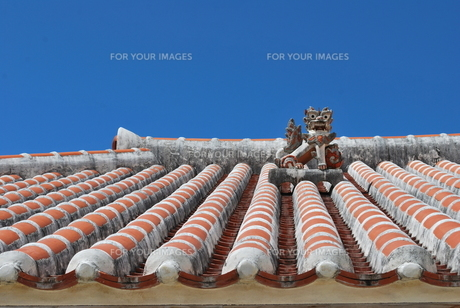 赤瓦の屋根とシーサーの写真素材 [FYI00335944]