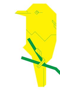 カワセミと枝の写真素材 [FYI00336019]