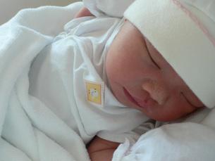 生まれたばかりの赤ちゃんの写真素材 [FYI00336075]
