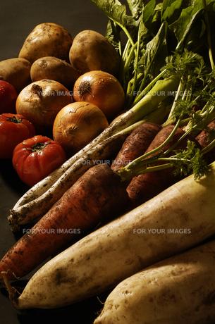 野菜の素材 [FYI00336103]