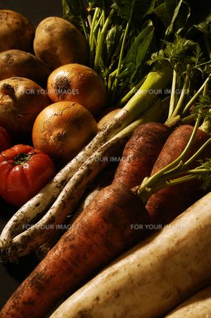 野菜の写真素材 [FYI00336131]