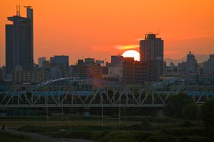 淀川河川敷夕焼けの写真素材 [FYI00336323]
