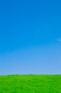 草原と青空の写真素材 [FYI00336329]
