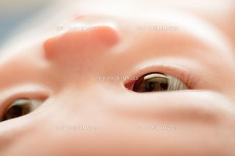 生後3ヶ月の女の子の写真素材 [FYI00336457]