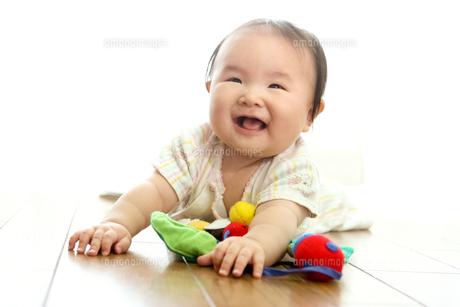 生後6ヶ月の女の子の写真素材 [FYI00336462]
