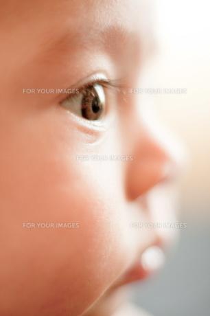生後3ヶ月の女の子の写真素材 [FYI00336467]