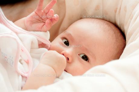 生後3ヶ月の女の子の写真素材 [FYI00336501]