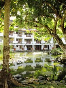池に反射する白いホテルの写真素材 [FYI00336521]
