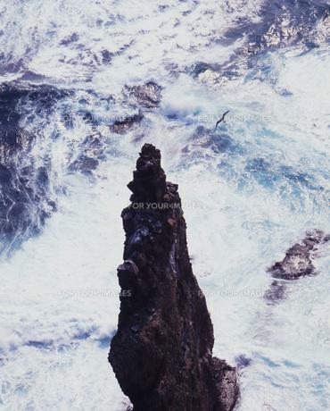 荒波の天売島の素材 [FYI00336712]