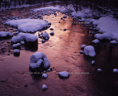 夜明けの渓流の素材 [FYI00336757]