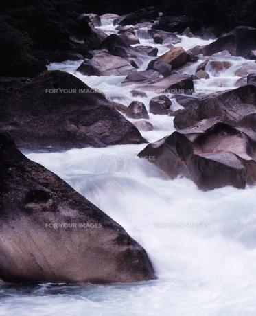 梅雨の阿寺渓谷の素材 [FYI00336777]