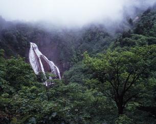 雨の滑川大滝の写真素材 [FYI00336828]