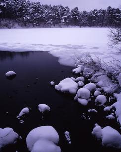 厳冬の柳沼の写真素材 [FYI00336846]