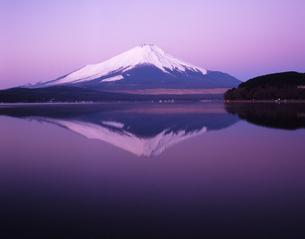 山中湖の朝の素材 [FYI00336848]