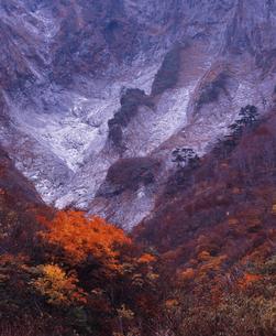 晩秋の谷川岳の写真素材 [FYI00336880]