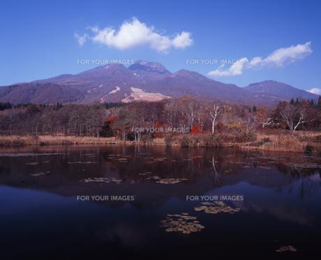 晩秋のイモリ池の写真素材 [FYI00336882]