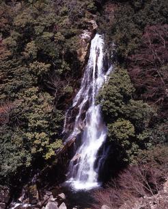 陽春の荒滝の素材 [FYI00336902]