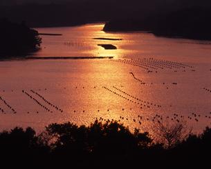 英虞湾の入日の写真素材 [FYI00336915]