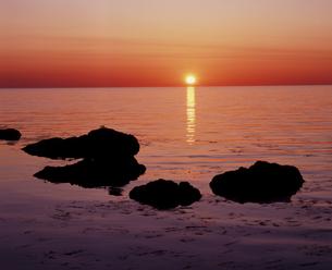 礼文島の夜明けの写真素材 [FYI00336916]