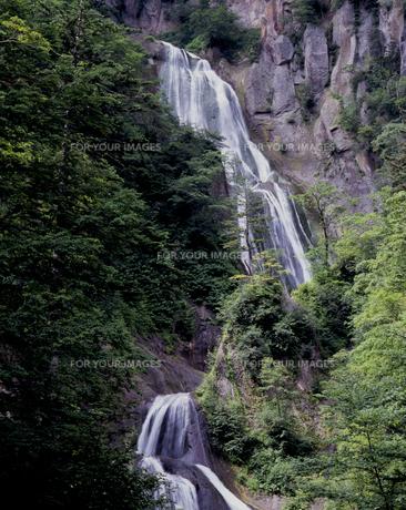 緑の羽衣の滝の素材 [FYI00336960]