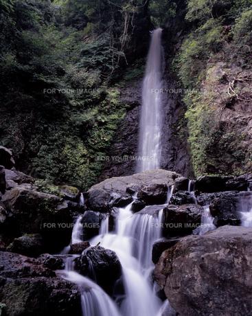 夏の養老の滝の写真素材 [FYI00336972]