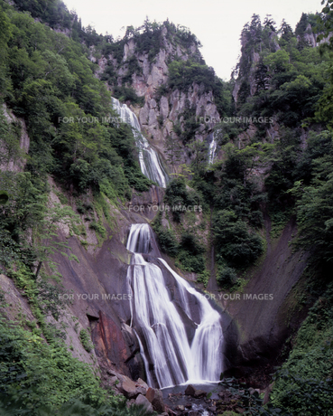 夏の羽衣の滝の素材 [FYI00336979]