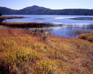 初秋の尾瀬沼の写真素材 [FYI00337039]