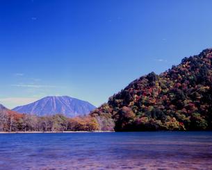秋晴れの西の湖の写真素材 [FYI00337105]