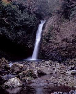 浄蓮の滝の写真素材 [FYI00337148]