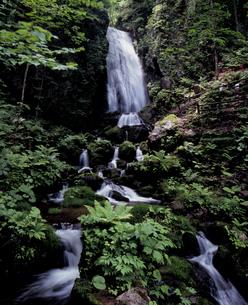 緑の不動の滝の写真素材 [FYI00337191]
