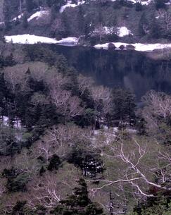 新緑の熊沼の写真素材 [FYI00337220]