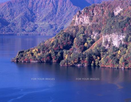 秋めきの十和田湖の素材 [FYI00337227]