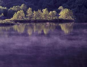 朝もやの秋元湖の写真素材 [FYI00337239]