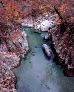 天狗淵の秋の写真素材 [FYI00337288]