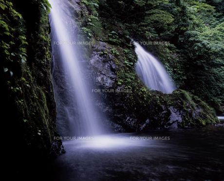 十二滝の滝壺の素材 [FYI00337318]