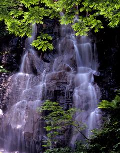 磐梯山幻の滝の写真素材 [FYI00337457]
