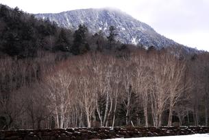 初冬の四郎岳の写真素材 [FYI00337489]