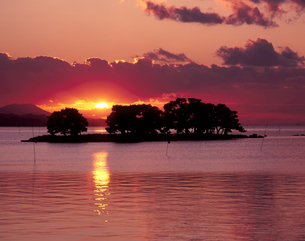 宍道湖の夕日の素材 [FYI00337576]