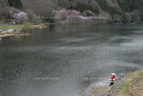 春の中綱湖の素材 [FYI00337768]