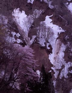 春の小谷温泉の写真素材 [FYI00337786]