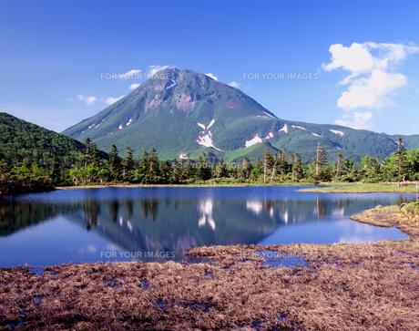 夏の三の沼と羅臼岳の素材 [FYI00337836]