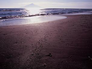 夕方のサロベツ海岸の写真素材 [FYI00337860]