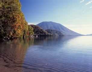 秋の中禅寺湖の写真素材 [FYI00338008]
