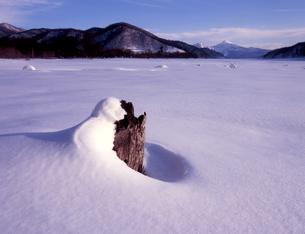 早春の桧原湖の素材 [FYI00338044]