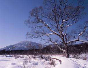 厳冬の黒姫山の写真素材 [FYI00338048]