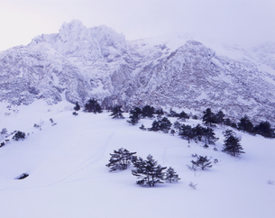 厳冬の磐梯山の写真素材 [FYI00338065]