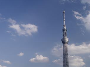 晩秋の東京スカイツリーの写真素材 [FYI00338087]