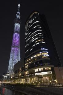 夜の東京スカイツリーの写真素材 [FYI00338204]